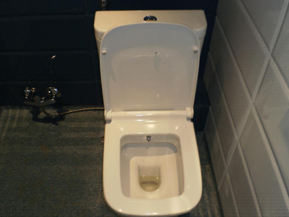 Монтирано WC